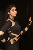 Pranitha Subhash in a skin tight backless brown gown at 64th Jio Filmfare Awards South ~  Exclusive 149.JPG