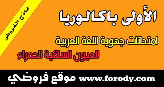 الأولى باكالوريا :الامتحان الجهوي جميع الشعب العلمية في اللغة العربية الدورة العادية 2016 جهة العيون الساقية الحمراء