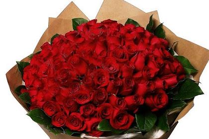 Ide Model Gambar Bunga Mawar Spesial Terlihat Keren
