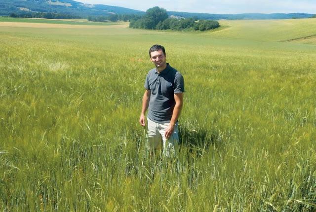 Malticulture: Brauereiwagen und wilder Hopfen