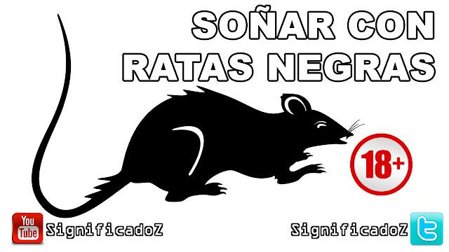 Soñar con Ratas Negras ¿Que Significa?
