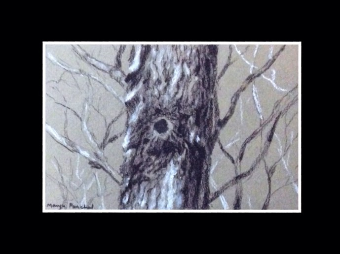Charcoal sketching of a tree by Manju Panchal