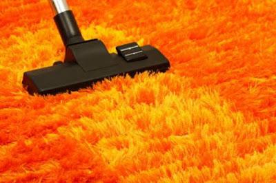 Cara merawat dan membersihkan karpet bulu