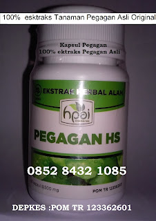 Jual khasiat manfaat kapsul ekstraks pegagan asli untuk kesehatan dan kecantikan