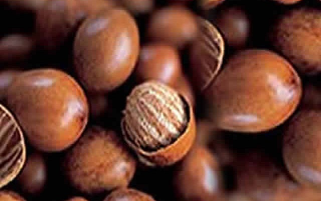 Shea Nuts industry collapsing - Iddi Zachariah