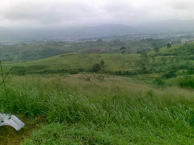 Foto(5201) Jual Tanah Milik | Kebun 23 Ha, Lokasi Puncak jual tanah di puncak