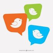 Projets Twitter
