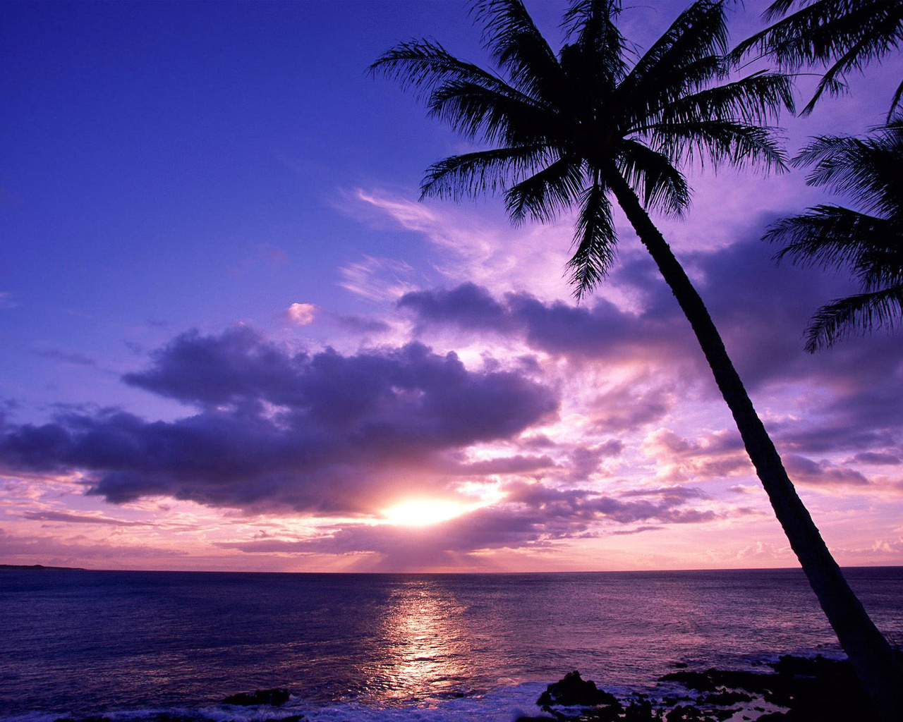 Tropical Island Sunset: Wallpaper Murals Tropical Beach