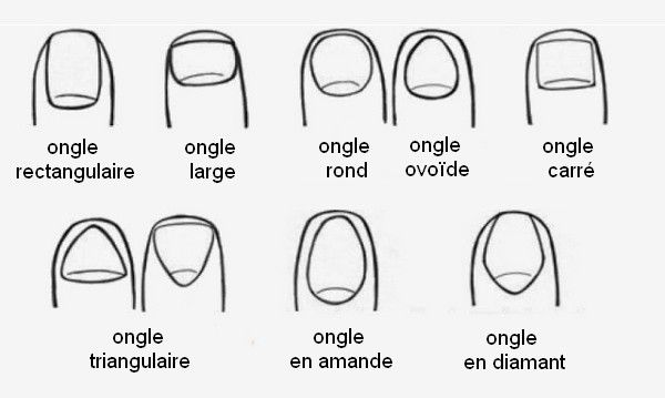 Types d'ongles