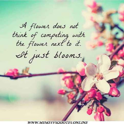 Just Blooms