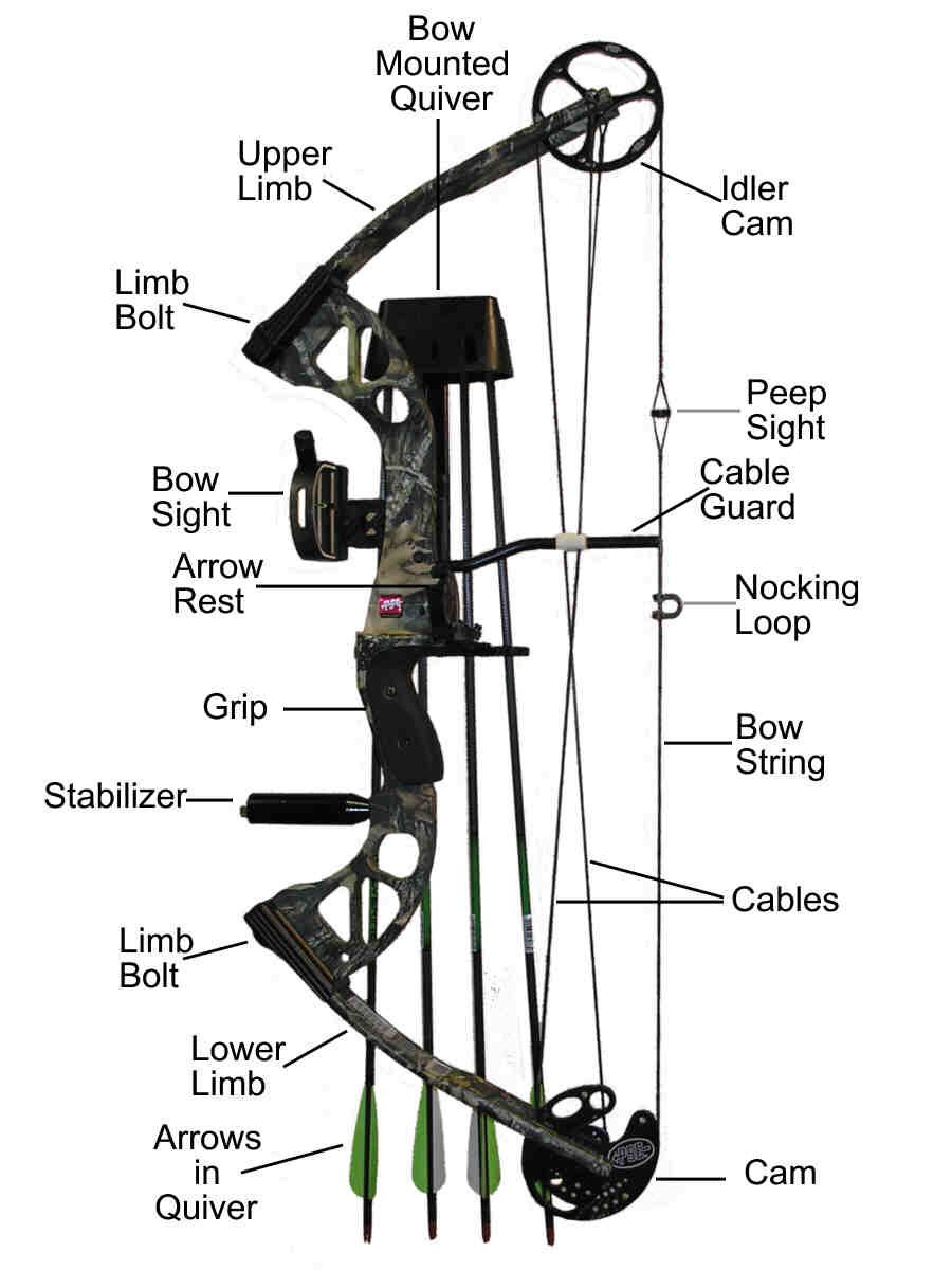 Project Gridless: How to Adjust Draw Weight on a Compound Bow