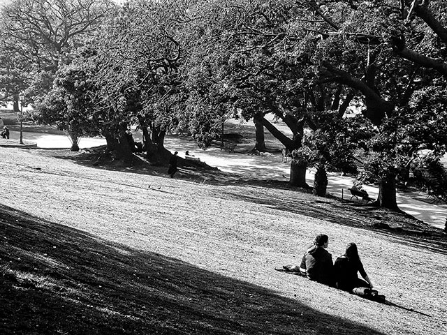 Blanco y Negro.Pareja de enamorados sentados en el parque.