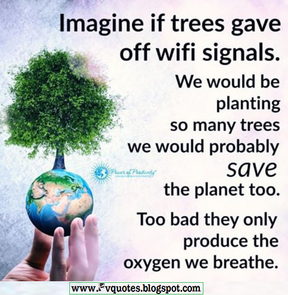 Imagine if trees gave off wifi signals quote about earth planet nature