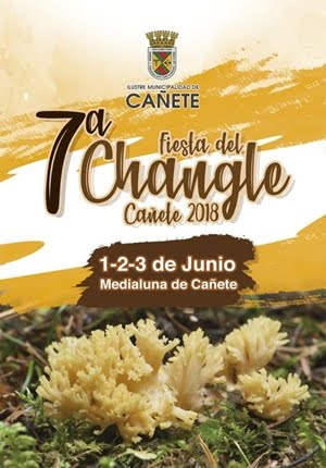 FIESTA DEL CHANGLE