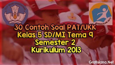 Contoh Soal PAT/UKK Kelas 5 SD/MI Tema 9 Semester 2 Kurikulum 2013