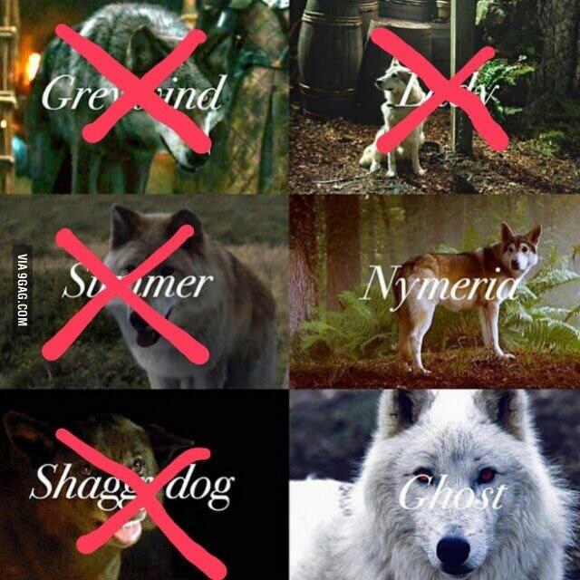 Los lobos de 'Juego de Tronos'