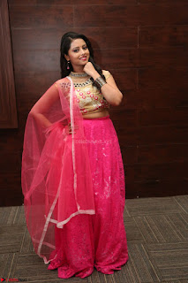 Geethanjali sizzles in Pink at Mixture Potlam Movie Audio Launch 025.JPG