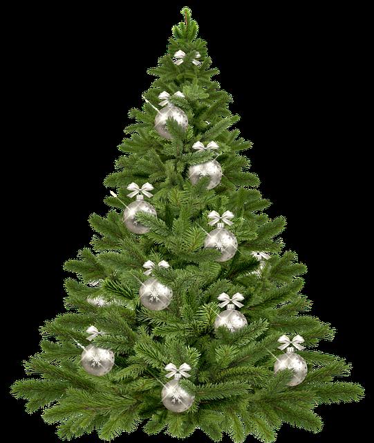 Merry Christmas-Image