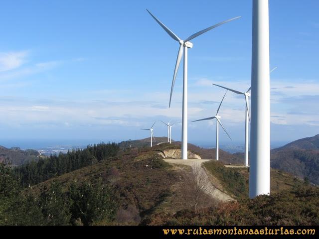 Ruta Sierra Bufarán, picos Degollada o Grande y Cotera: resto del parque eólico desde el Pico Grande