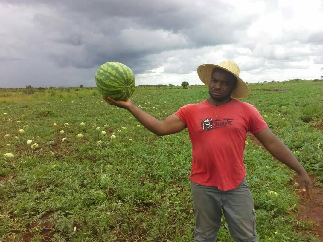 Rahmane BIDIMA, Un agriculteur camerounais qui monte une florissante exploitation agricole