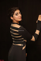 Pranitha Subhash in a skin tight backless brown gown at 64th Jio Filmfare Awards South ~  Exclusive 128.JPG