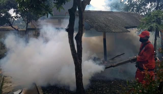 Petugas melakukan fogging