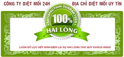 Công ty diệt mối uy tín tại Hà Nội