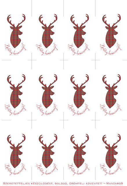 Ajándékkísérő skót szarvasos - 12db/A4 - print I Manzard9