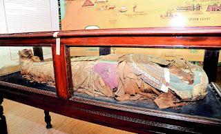 مصری ممّی کے تحفظ کیلئے اقدامات