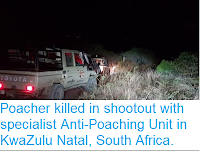 http://sciencythoughts.blogspot.com/2018/07/poacher-killed-in-shootout-with.html