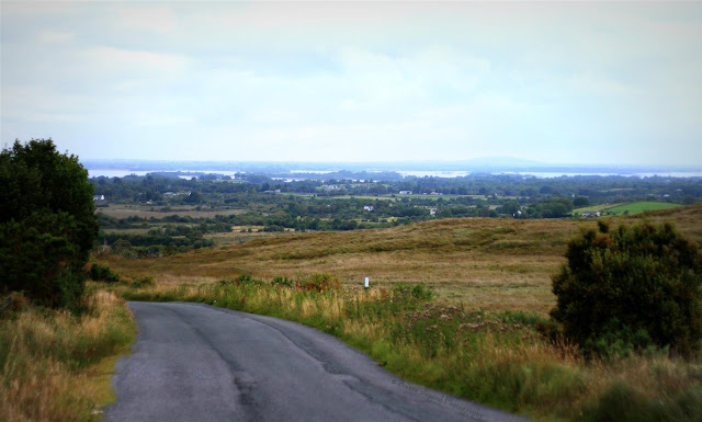 Panorama view of the Lough Corrib in the background and fields and forest in Connemara