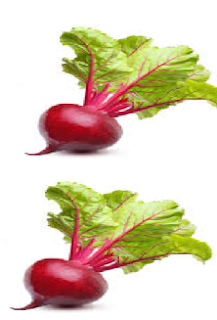 Beetroot meaning in hindi, Spanish, tamil, telugu, malayalam, urdu, kannada name, gujarati, in marathi, indian name, marathi, tamil, english, other names called as, translation