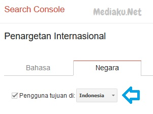 Mengatur Target Negara Di Google Search Console