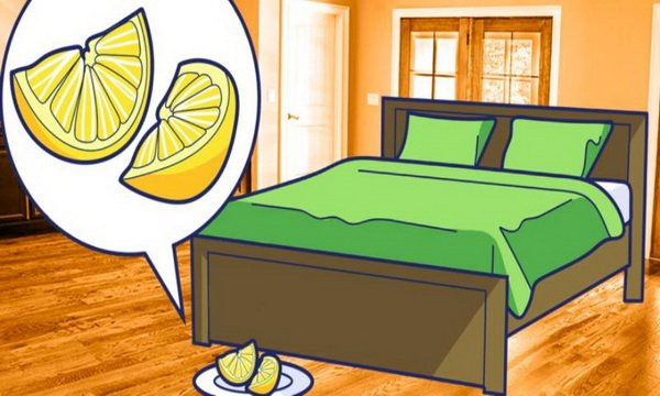 That's Why You Have To Put Each Evening Two Lemon Slices Next To Your Bed