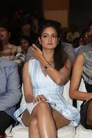 Shanvi Looks super cute in Small Mini Dress at IIFA Utsavam Awards press meet 27th March 2017 75.JPG