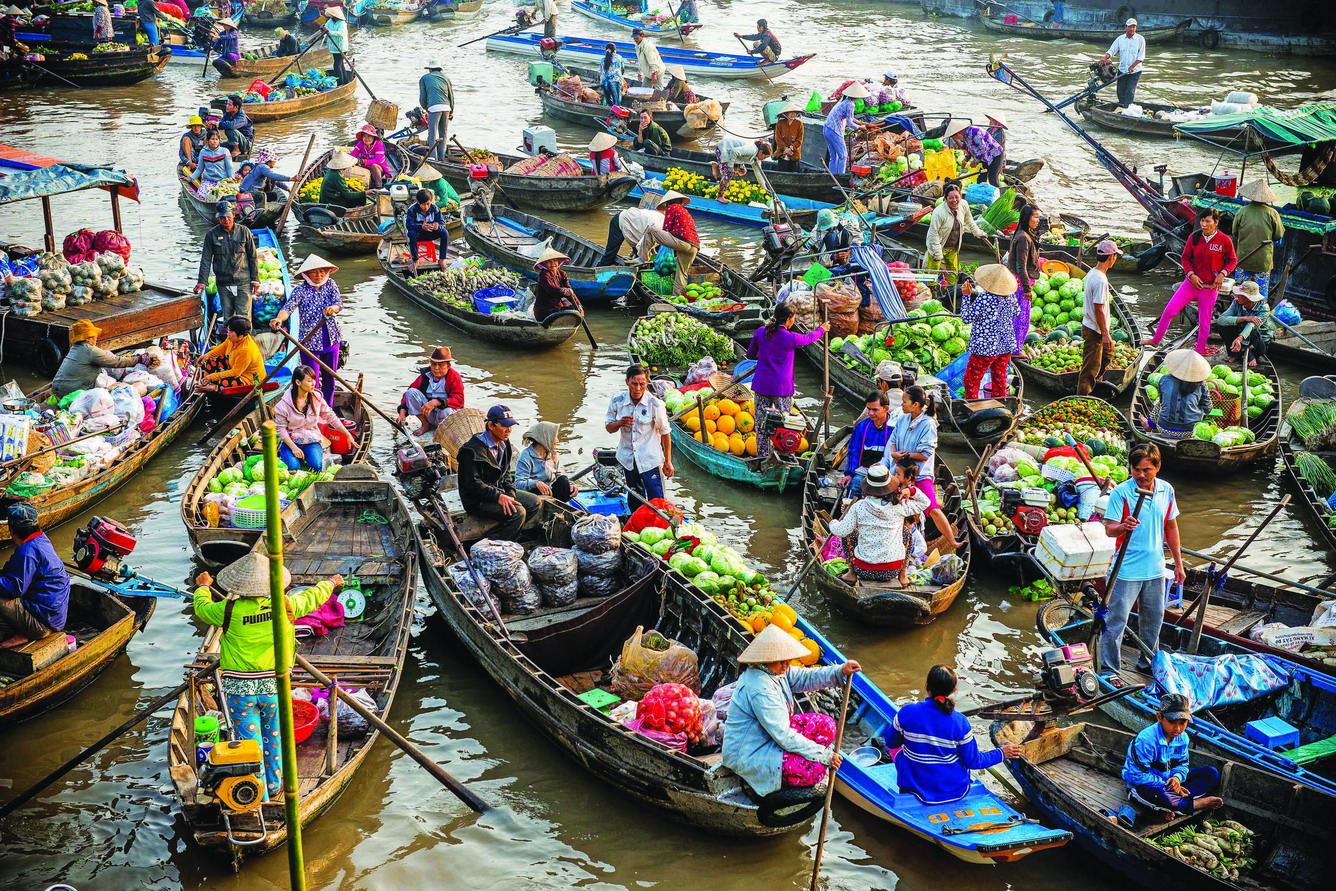 Vietnamese Portable Vege Market - RenLok