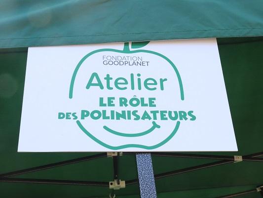 role-polinisateur-blédina