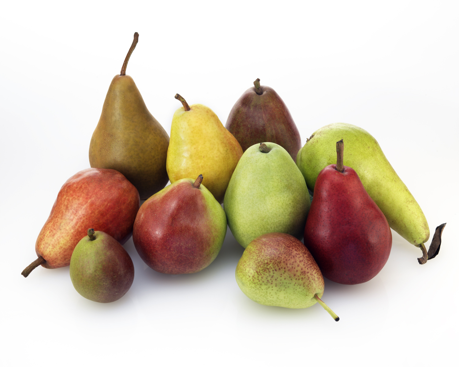 The Earth Of India All About Pear In India