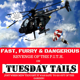 FAST FURRY & DANGEROUS Graphic ©Copyright @BionicBasil®