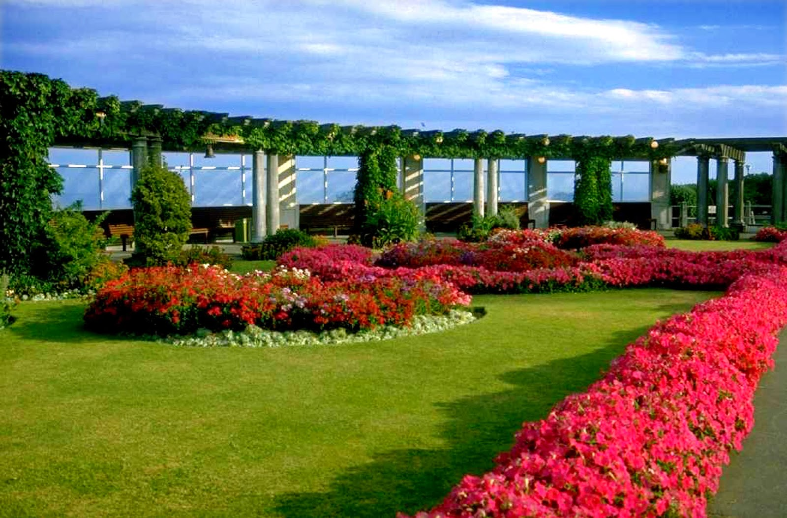 Top 10 Punto Medio Noticias Garden Background Hd Photo Download