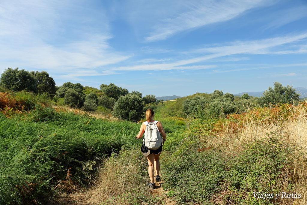 Caminando por Las Médulas, León