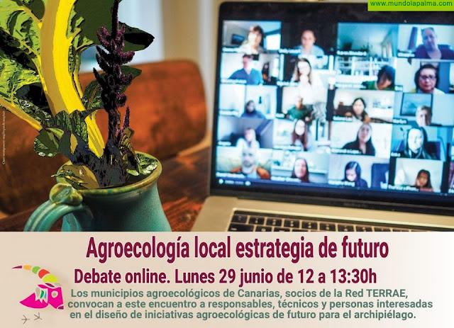 Villa de Mazo participa en un debate online sobre agroecología local como estrategia de futuro