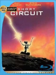 Cortocircuito (1986)HD [1080p] Latino [GoogleDrive] SilvestreHD