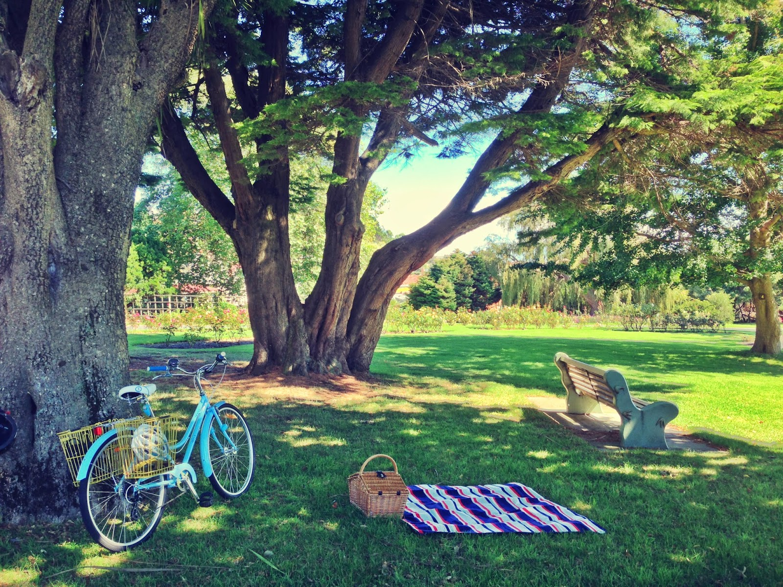 Bicycle Bicycle Burnie Bicycle Picnic Summer Edition