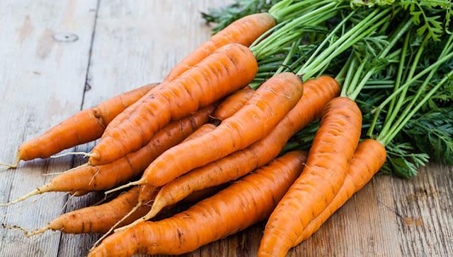 Tips Menjaga Hasil Kualitas Panen Dengan Waring Sayur