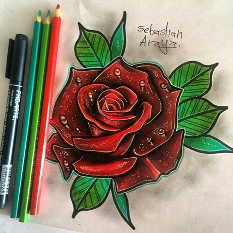 Los Mejores Dibujos De Rosas A Lapiz A Todo Color Guia Dibujo