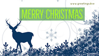 White background dark blue Christmas deer