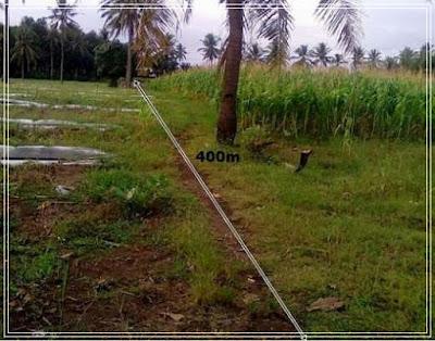 1 hektar