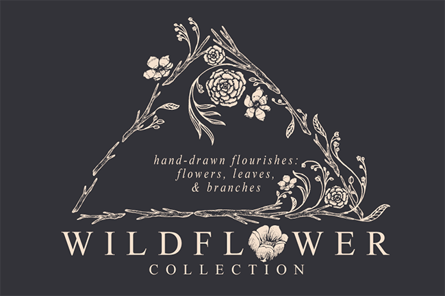 Wildflower Collection par Feanne