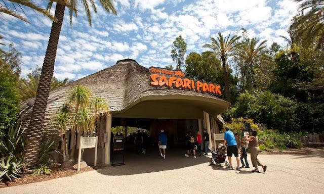 Zoo Safari Park no mês de janeiro em San Diego